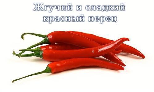 Жгучий и сладкий красный перец